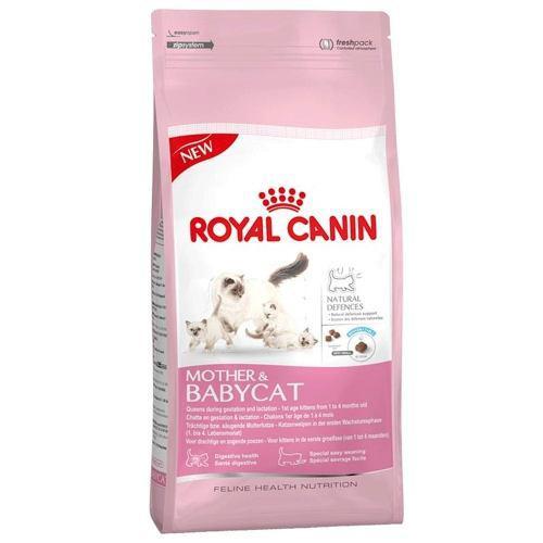 Alimento gatitos mother & babycat 1.5 kg royal canin