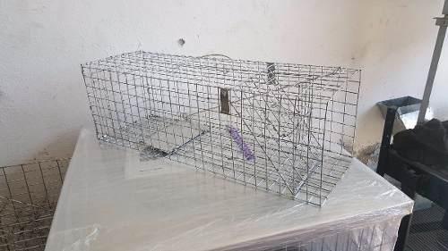 Trampa para ardilla rata o animales pequeños