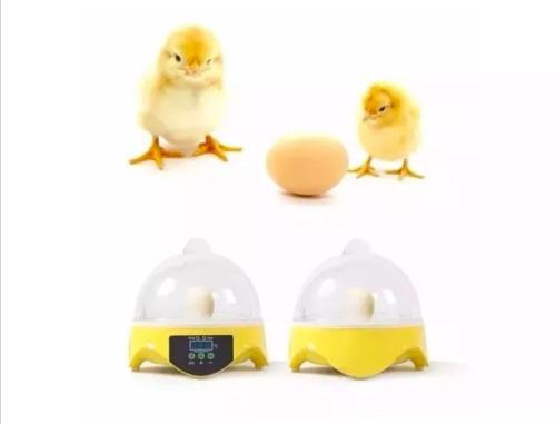 Incubadora de 7 huevos pollos, codorniz, faisan etc pequeña