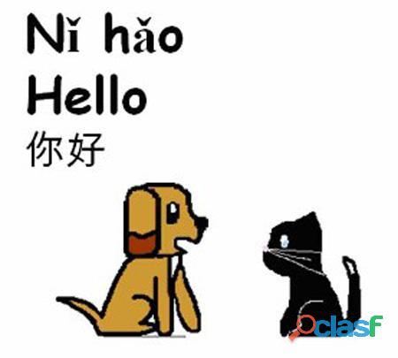 Clases de chino mandarín, coreano y japonés