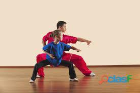 Sanda, kung fu y tai chí