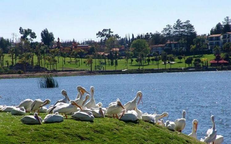 Terreno residencial| area: 537.69 m2 ° cumbres del lago