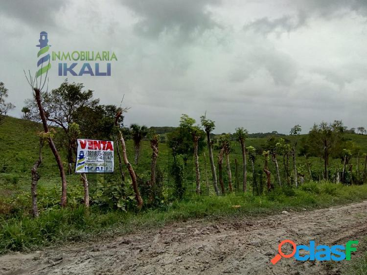 Venta terreno 7.2 hectáreas detrás walmart tuxpan veracruz méxico, alto lucero