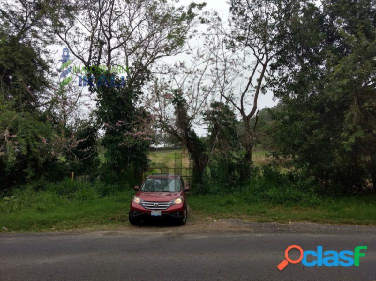 Venta rancho ganadero 103 hectáreas carretera tuxpan -tampico, temapache