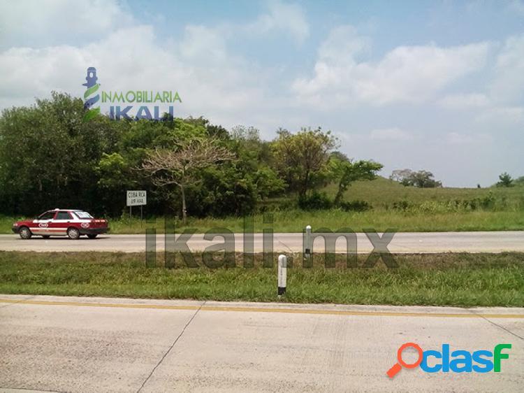 Renta terreno 4.17 hectáreas autopista tuxpan-méxico veracruz, ceiba rica