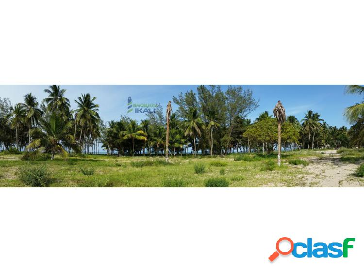 Venta terreno 1 hectárea playa tuxpan veracruz., la barra norte