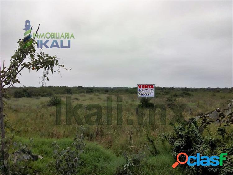 Renta terreno 15.2 hectáreas zona industrial tuxpan veracruz, la victoria