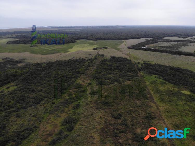 Renta Terreno 15.2 hectáreas zona Industrial Tuxpan Veracruz, La Victoria 3