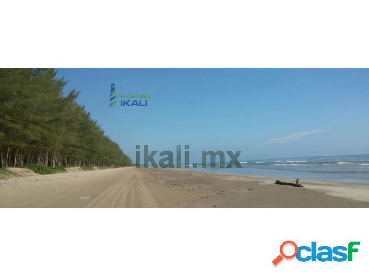 Venta Terreno 30 hectáreas Playa tamiahua Veracruz, Majahual
