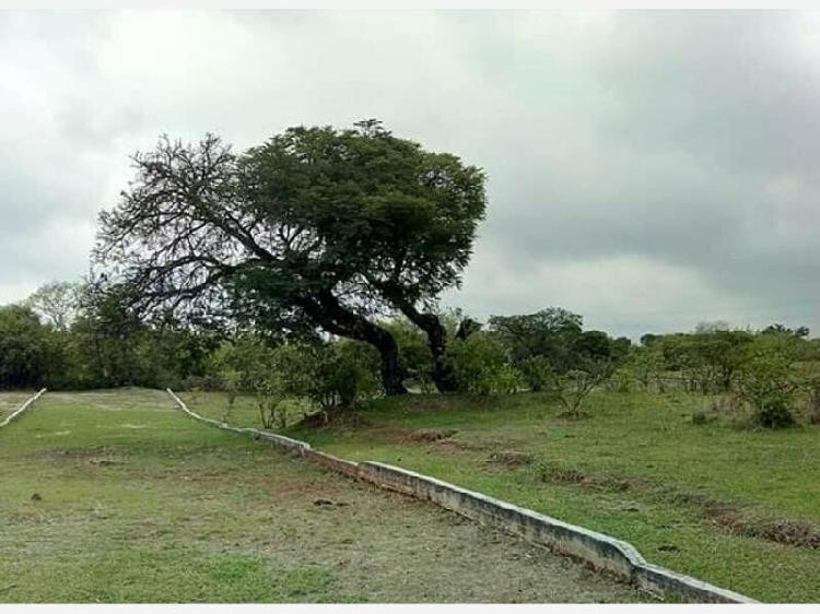 Terreno en venta en totolapan