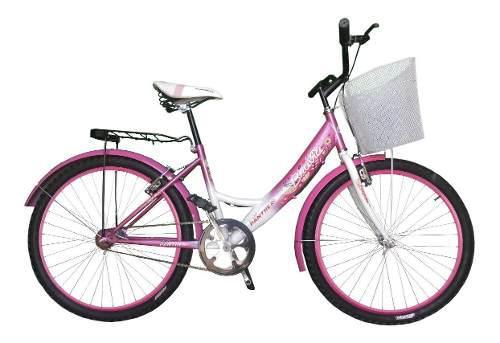 Bicicleta equipada con canasta bravia rodada 24