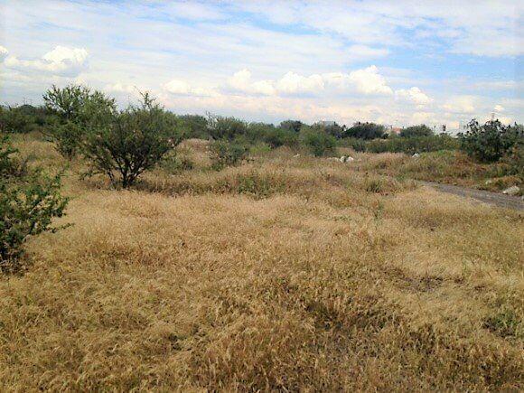 Terreno en venta en el municipio de corregidora queretaro