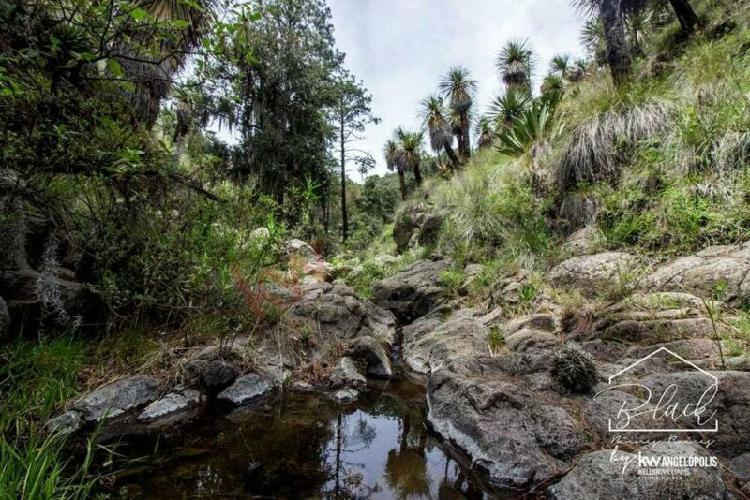 Venta terreno forestal en tlaxcala a 20 minutos de audi