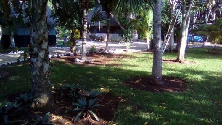 Terreno ecoturistico holbox en chiquila q roo estilo maya