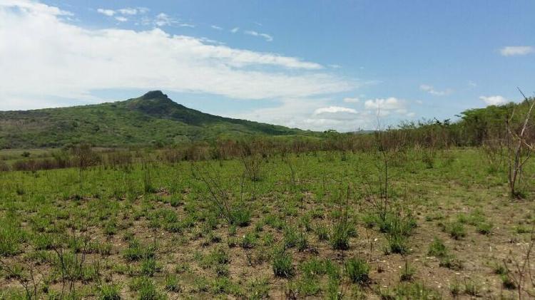 En venta terreno 6 hectáreas en América Libre, Chiapa de