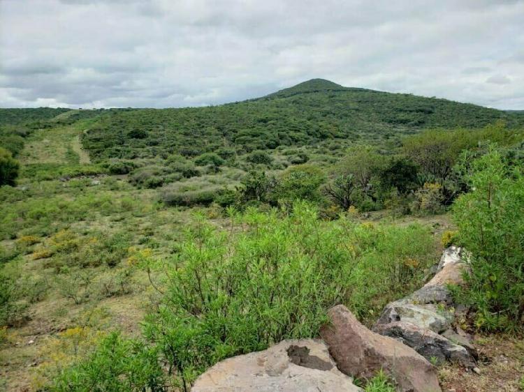 Oportunidad de inversión: terreno en venta a 14 km de