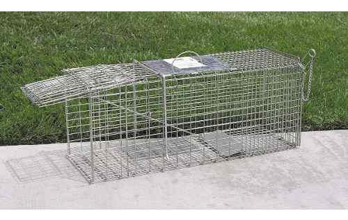 Jaula trampa para animales domesticos o salvajes peligrosos
