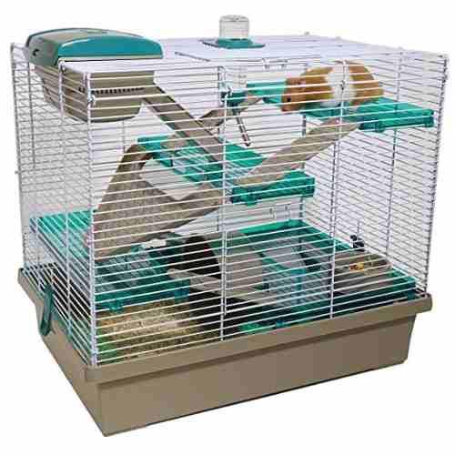 Pico xl translúcido teal - hámster y pequeños animales
