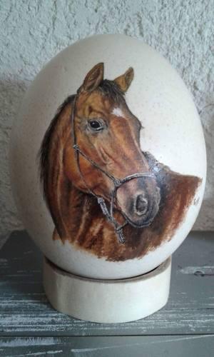 Caballo pintado a mano, sobre huevo de avestruz