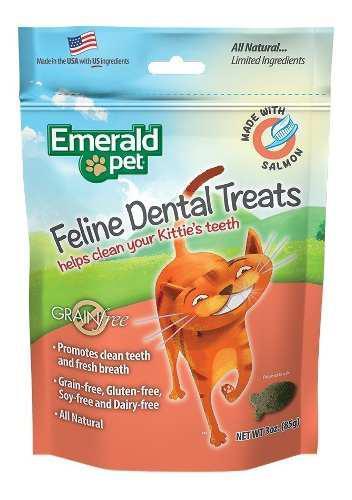 Premios dentales receta salmon para gato