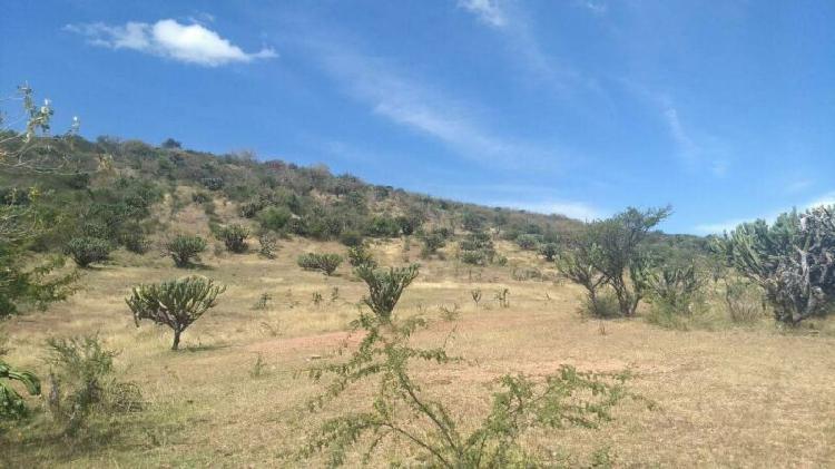 H&h vende terreno de 2 hectáreas, a pie de carretera a