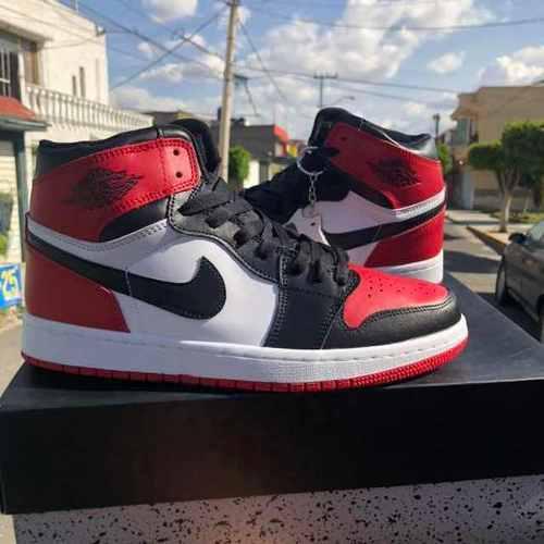 Jordan retro 1 + envío gratis