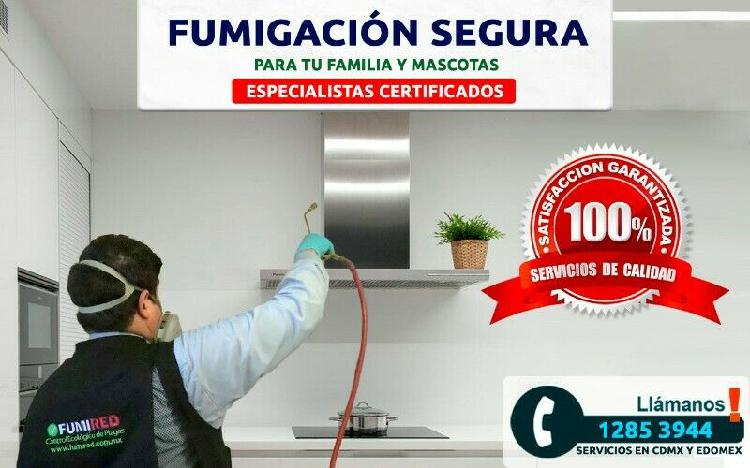 Fumigación efectiva de chinches y más plagas, garantizado