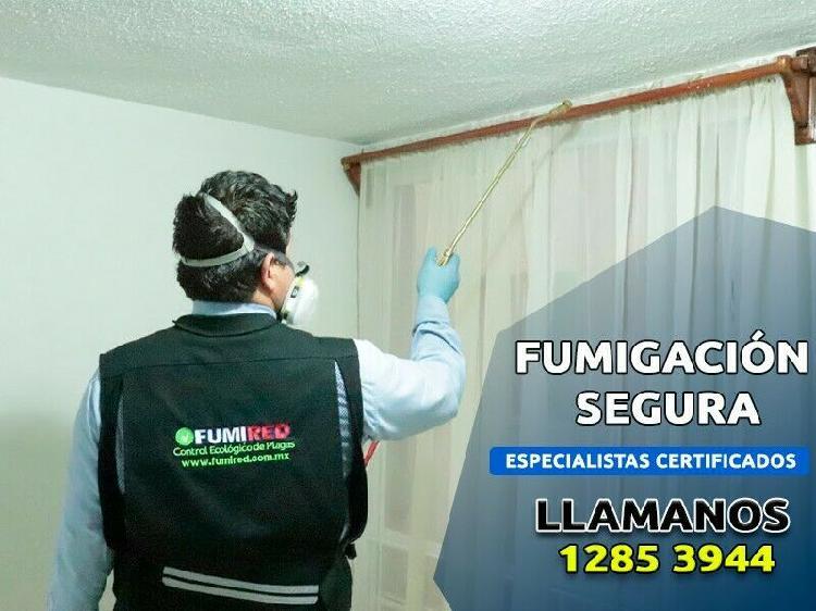Fumigaciones en cdmx y edomex, servicio garantizado.