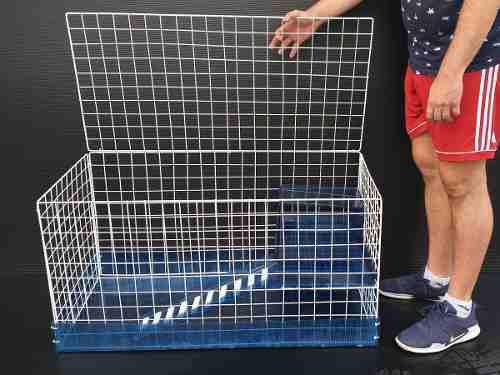 Jaula artesanal para cuyo o conejo base policarbonato