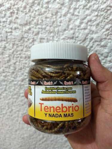Tenebrios ecotics premios para animales insectívoros 50 gr.