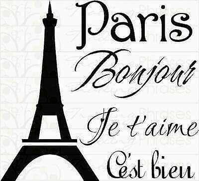 Francés desde 0! comienza ya!