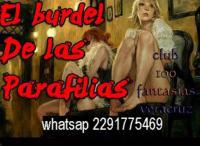 Dominate para damas solas y parejas swingers veracruz