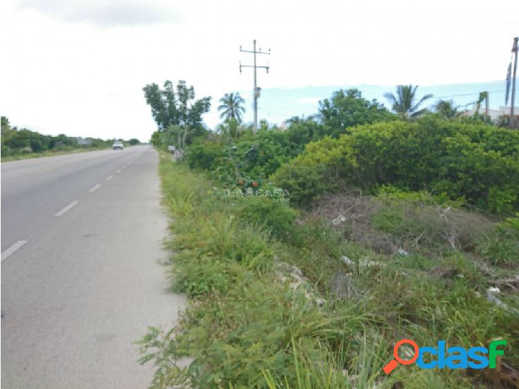 Terreno en chelem a pie de carretera