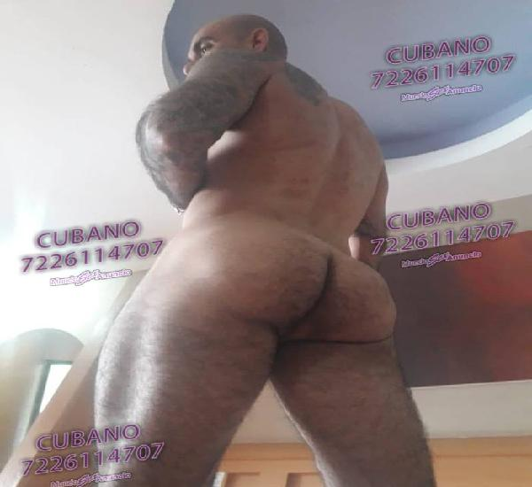 MACHO CUBANO VERGON EN CORDOBA