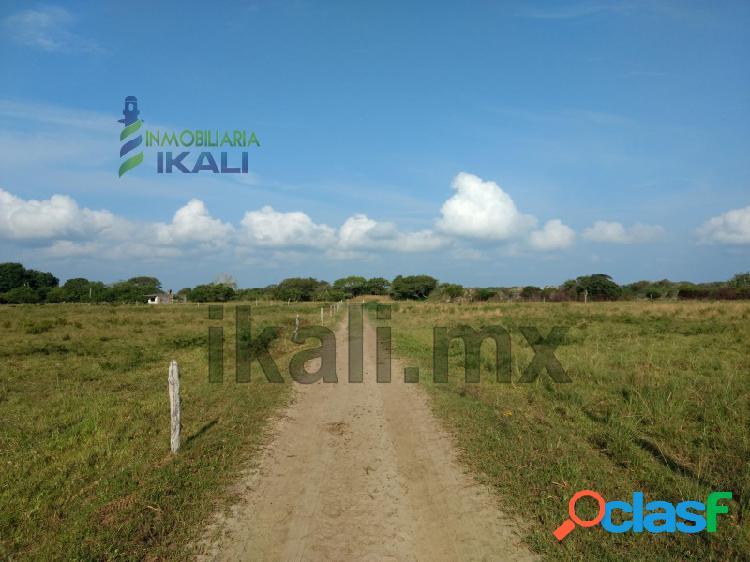 Venta rancho 100 hectáreas frente laguna tamiahua veracruz, tamiahua