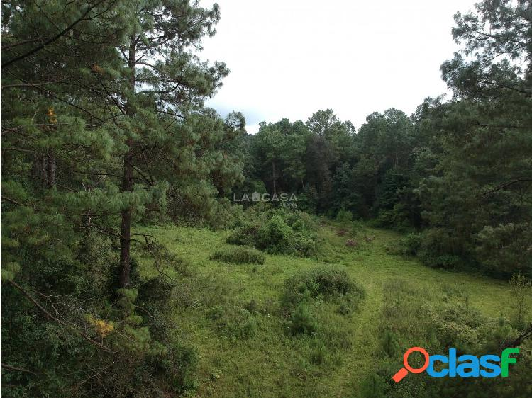 Terreno ideal para rancho cerca de acatitlán