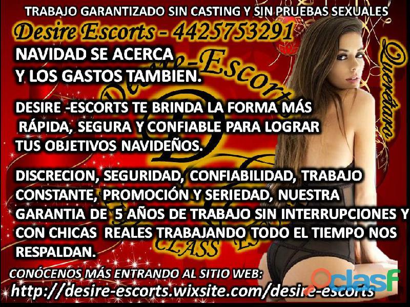 BUSCAMOS CHICAS GUAPAS DECIDIDAS 4425753291