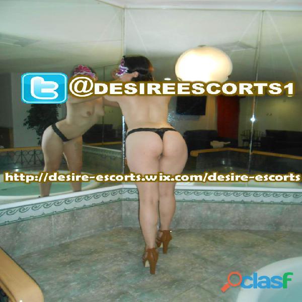 SERVICIO A HOTEL Y MOTEL 4425753291