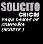 SE SOLICITAN CHICAS DE AMPLIO CRITERIO