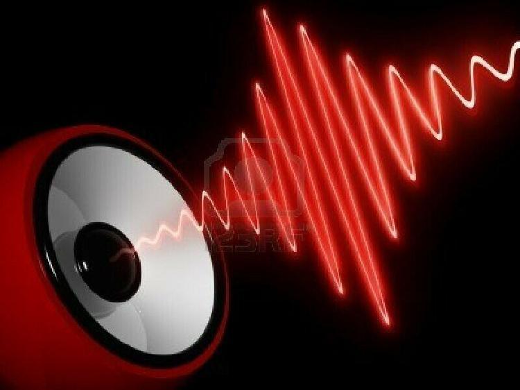 Servicio profesional a aparatos y equipo de audio