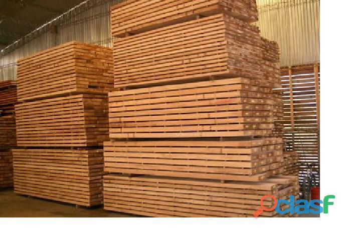 Renta de madera par aconstruir