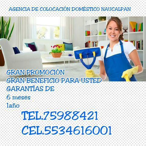 Agencia de servicios domesticos