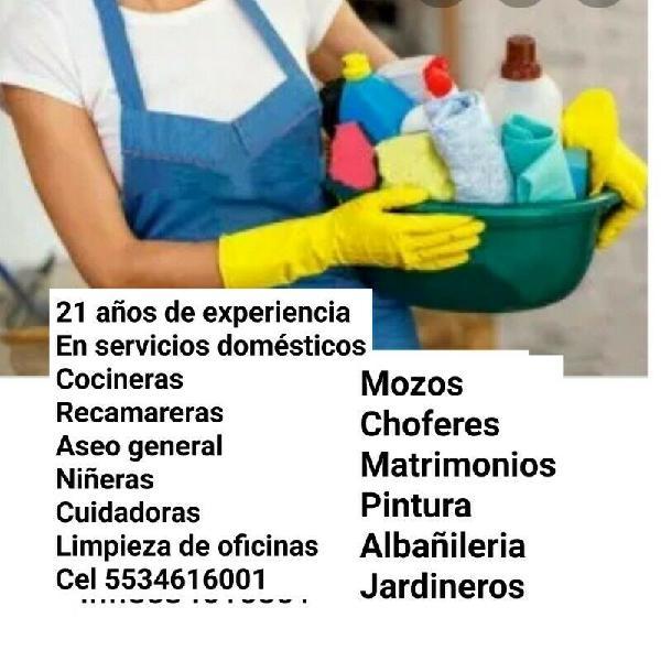 Limpieza servicios doméstico