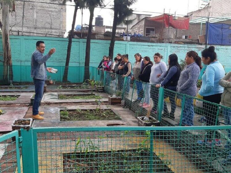 Taller de agricultura urbana 6 horas grupos reducidos.