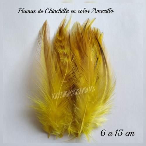 Plumas de flecos finos de chinchilla y faisán con 50 plumas