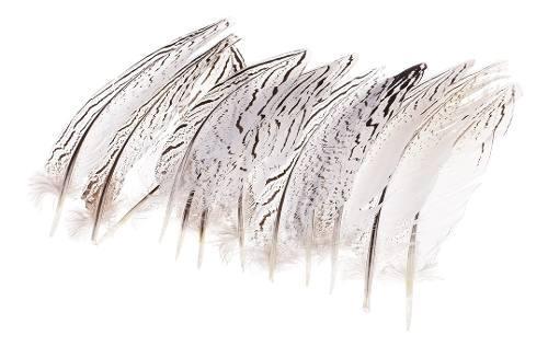 Pluma del ala 12 plumas de faisán natural de 12 piezas