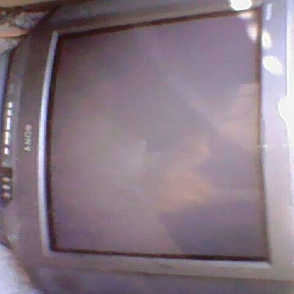 Tv sony triniton 19 pulgadas vendo