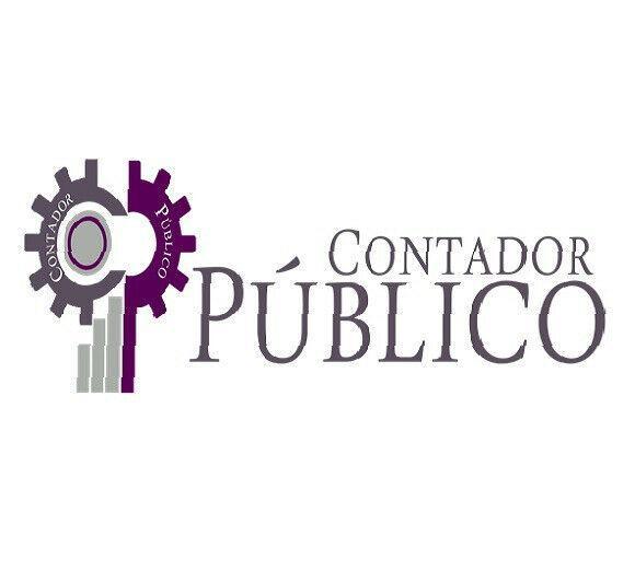 Contador publico independiente