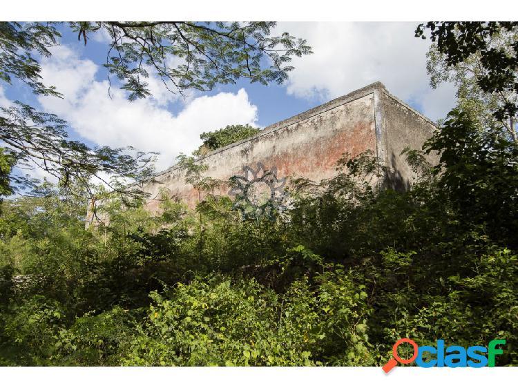 En venta terreno con casona y cenote en Temozón