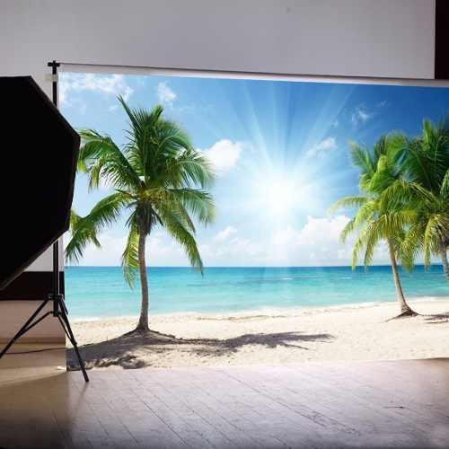 Palm tree sun beach - fondo para fotografía (210 x 150 cm)